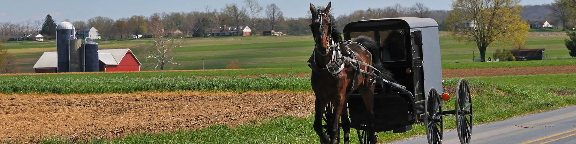 The Amish Heritage Foundation | Reclaiming our Amish story