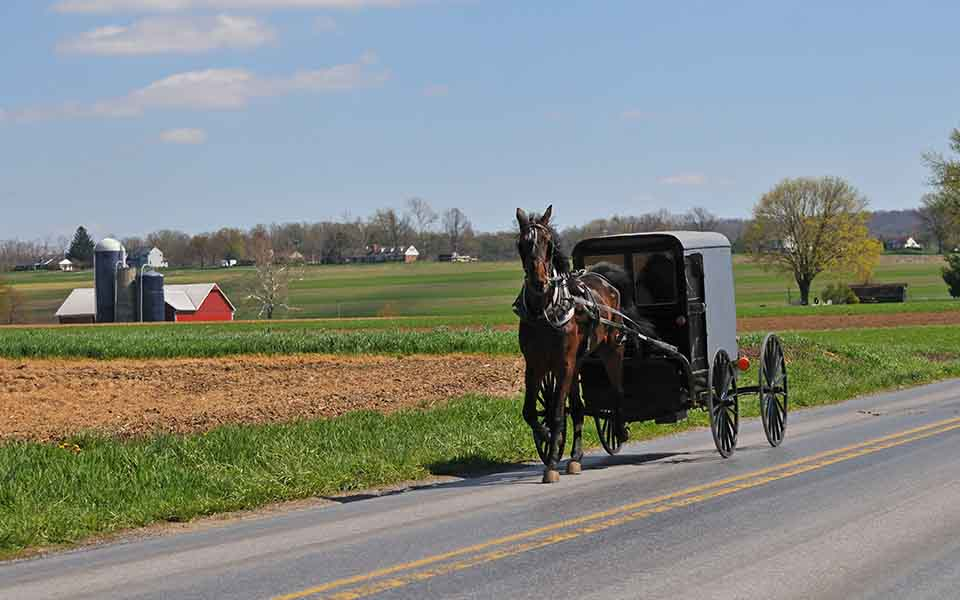 The 1965 Amish Rural Revolution That Led to Wisconsin v. Yoder